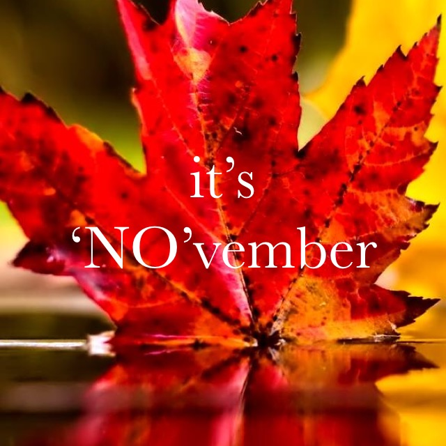 NOvember Just Say No Challenge